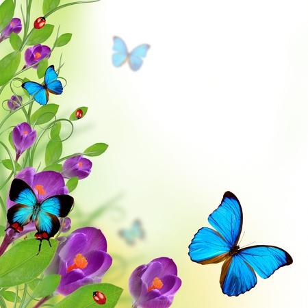 animal border: Beautiful floral design