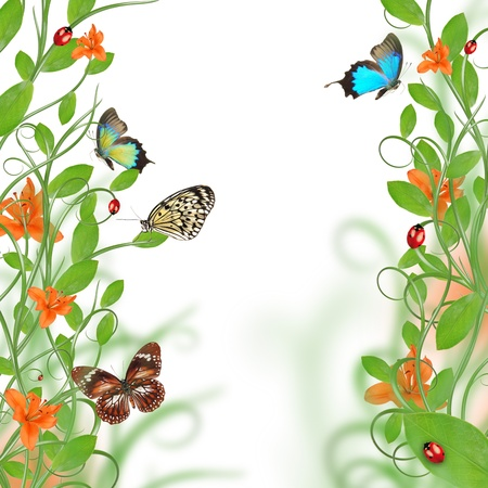 butterfly border: Beautiful floral design Stock Photo