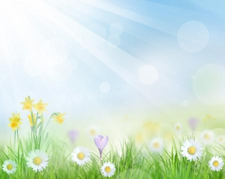blinking: Beautiful spring background