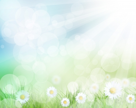 spring background: Beautiful spring background