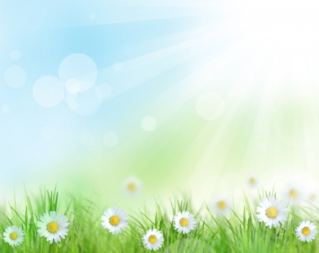 de focus: Beautiful spring background