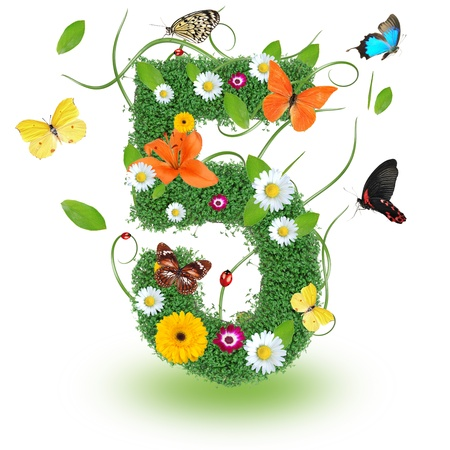 Beautiful spring number  5  Stock Photo