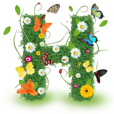 letter head: Beautiful spring letter H Stock Photo