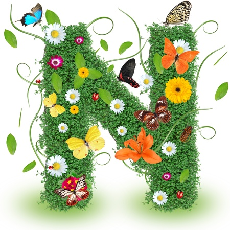 exotic butterflies: Beautiful spring letter N Stock Photo