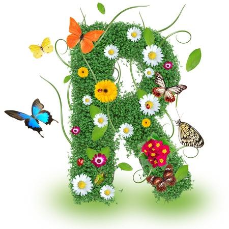 alfabeto con animales: Carta Hermosa primavera R Foto de archivo