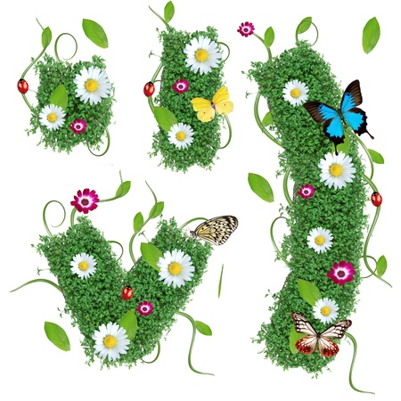 exotic butterflies: Beautiful spring special symbols