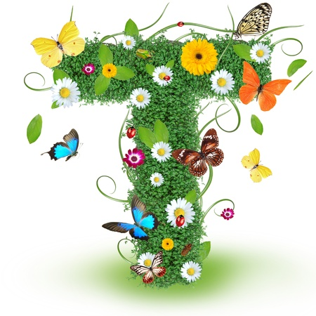 letter head: Beautiful spring letter  T   Stock Photo