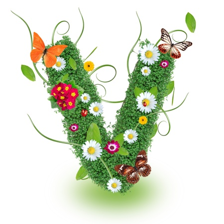 Beautiful spring letter  V   photo