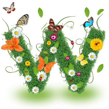 papilio: Beautiful spring letter  W