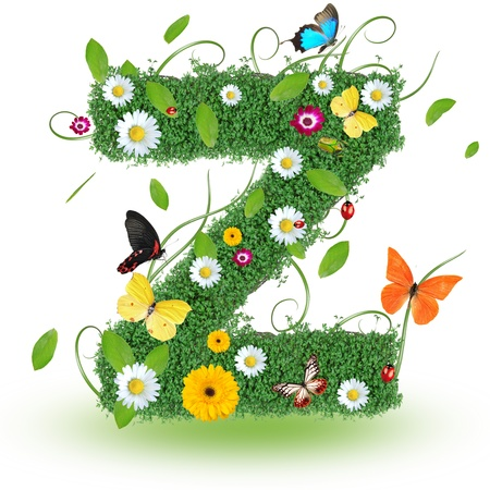 Beautiful spring letter  Z   Stock Photo - 14890106