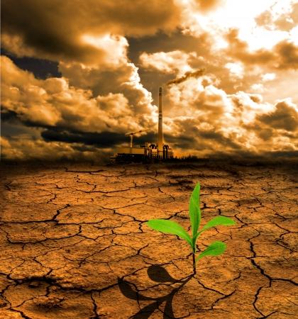 barren land: Cracked pollution ground