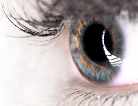 ojos marrones: Ojo hermoso de la mujer Foto de archivo