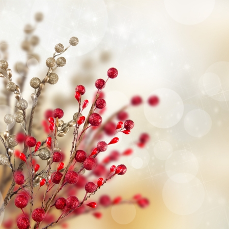 snow drops: Christmas gold and red decoration Stock Photo