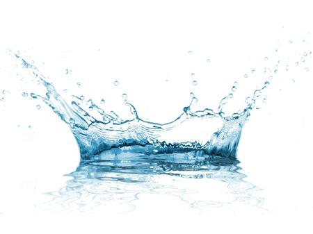 spruzzi acqua: L'acqua spruzzata su sfondo bianco