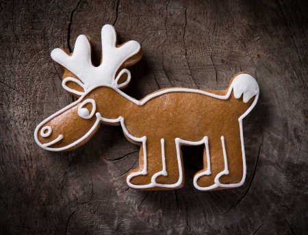 gingerbread cookie: Gingerbread cariboo