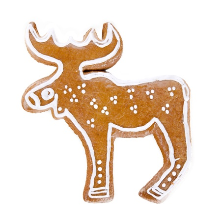 Gingerbread cariboo over white background photo
