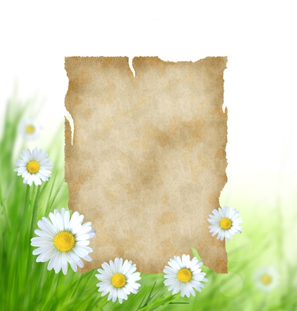 Floral background with blank paper photo