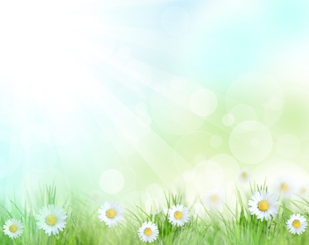 Abstract spring background