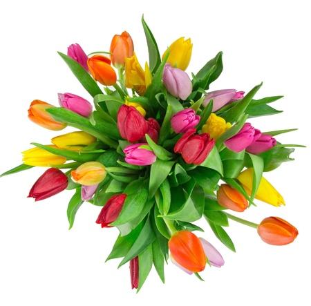 calla lily: Beautiful tulips bouquet