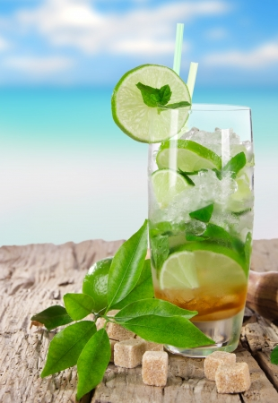 Mojito cocktail  Stock Photo - 17801050