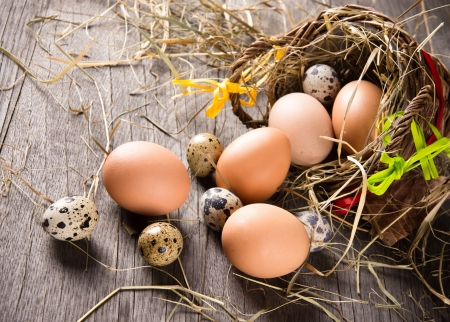 quail egg: Eggs in brown basket Stock Photo