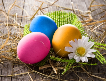egg hunt: Colorful easter eggs