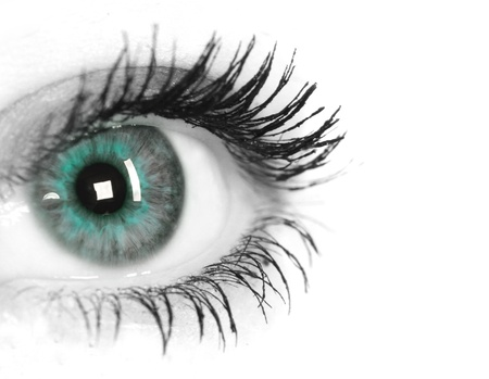 cornea: Beautiful Eye of Woman