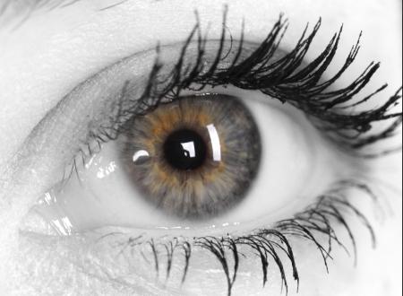 eyelid: Beautiful Eye of Woman