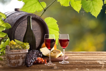 stilllife: Wine still-life