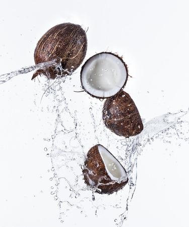 coco: Cocos frescos con salpicaduras de agua sobre fondo blanco.