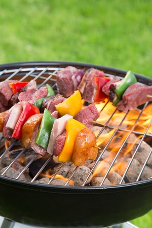 catering food: Tasty skewers on garden grill.