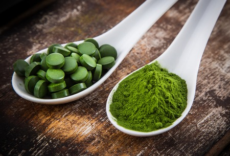 Young barley and chlorella spirulina  Detox superfood  Stock Photo