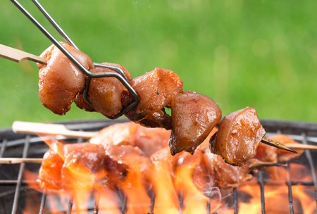 skewer barbecue photo