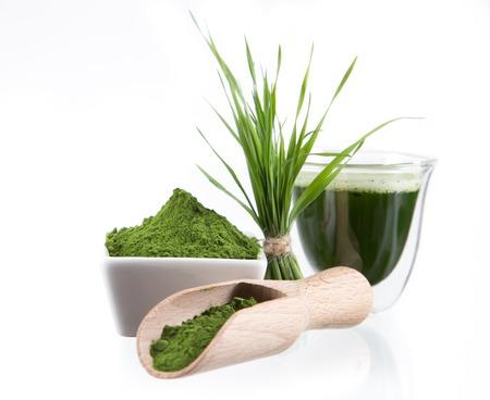 superfood: Young barley and chlorella spirulina  Detox superfood  Stock Photo