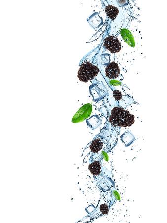 Fresh blackberries in water splash on white background photo