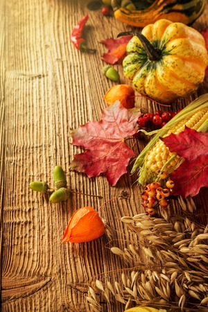 fall decoration: Autumn background