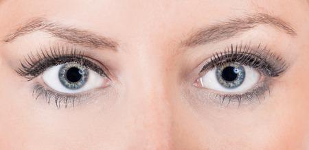 Close up of a female eye, macro shot. photo