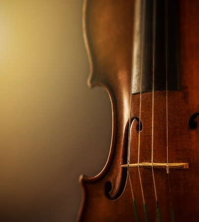 violin in vintage style on wood background photo