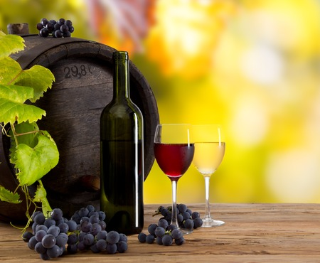 Wine still-life, glass, young vine and bunch of grapes photo