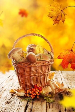 Ceps on wooden table, autumn harvest crop photo