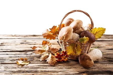 edulis: Ceps on wooden table, autumn harvest crop Stock Photo