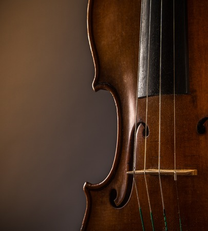 of mozart: violin in vintage style on wood background