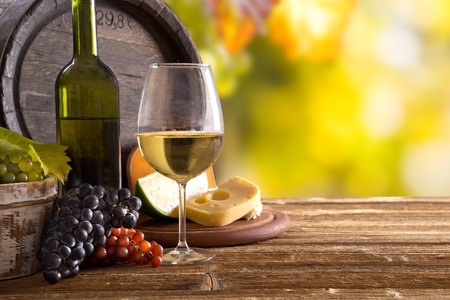 Wine still-life, glass, young vine and bunch of grapes Stock Photo