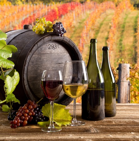 grape fruit: Wine still-life, glass, young vine and bunch of grapes Stock Photo