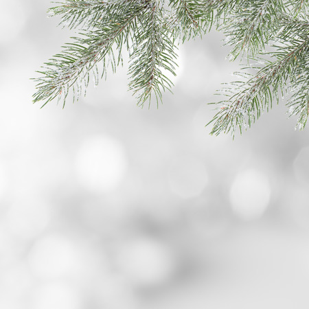 holiday tradition: Abstract Christmas background, close-up. Stock Photo