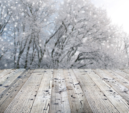 powder snow: Winter background with falling snow during sunny day.