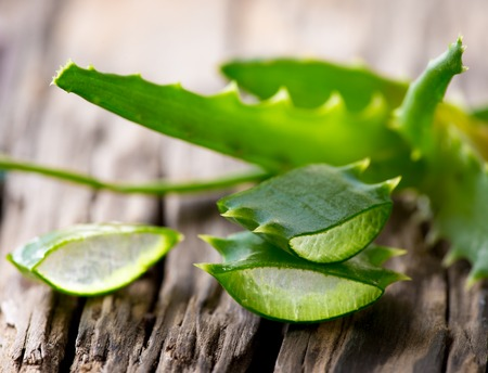 Aloe Vera leaves on wooden background Imagens