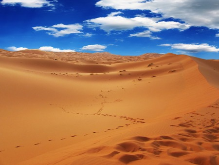 inhospitable: Moroccan desert landscape. Dunes background.