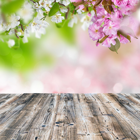wooden desk: Spring background with wooden desk