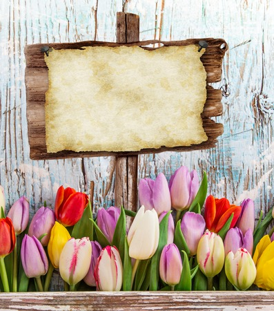 Tulips on wooden background, close-up.